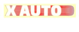 X Auto Logo