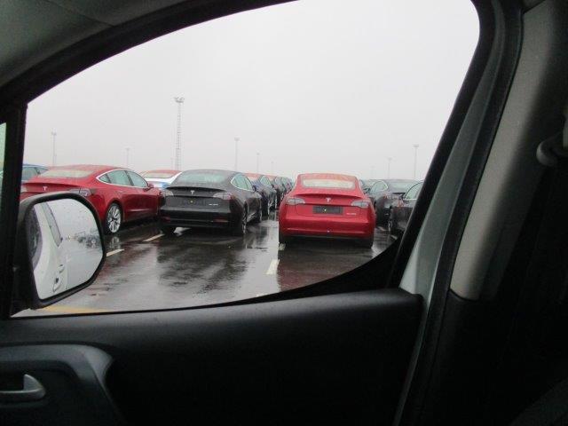 Tesla Model 3 vehicle fleet at the Port of Zeebrugge, Belgium - red Model 3s from behind