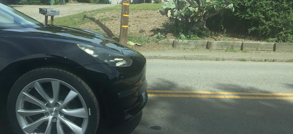 Model 3 caught testing in the wild