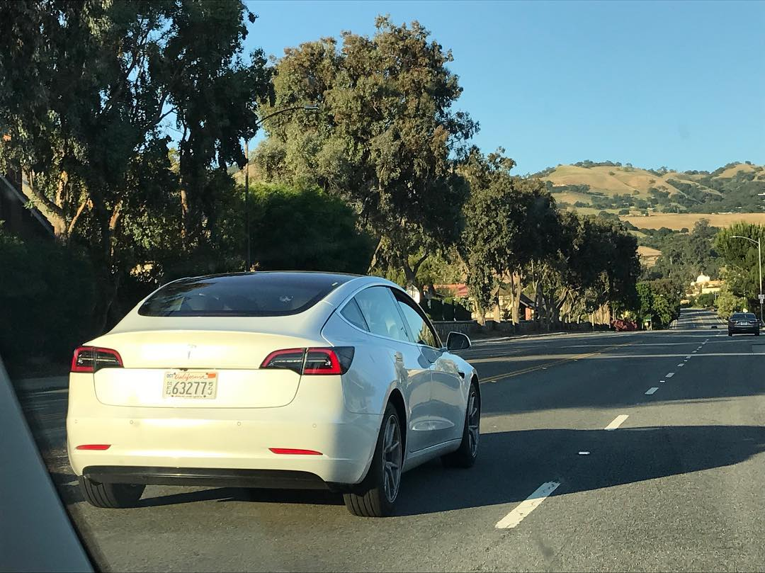 White Tesla Model 3 Spotted Rear View