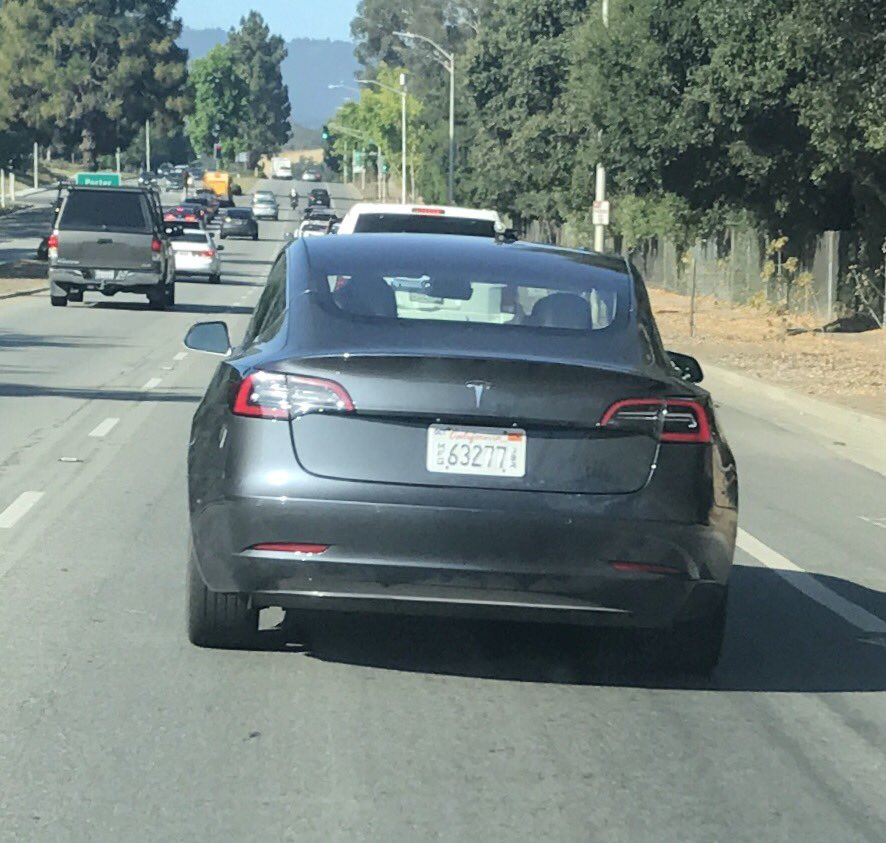 Tesla Model 3 Gray Spotted