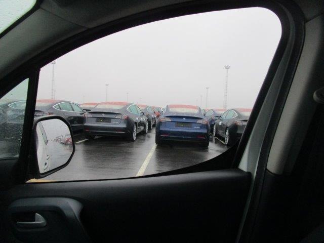 Tesla Model 3 vehicle fleet at the Port of Zeebrugge, Belgium