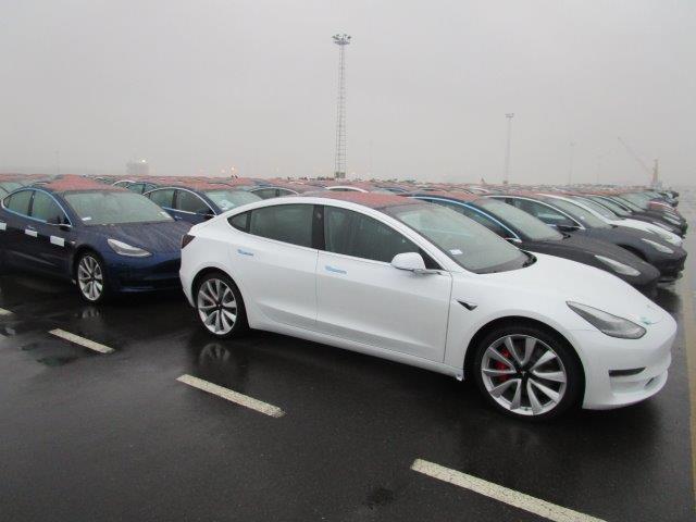 Tesla Model 3 vehicle fleet at the Port of Zeebrugge, Belgium - white Model 3 in front