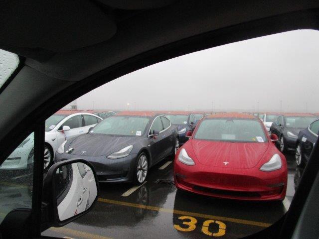 Tesla Model 3 vehicle fleet at the Port of Zeebrugge, Belgium - red Model 3 in front