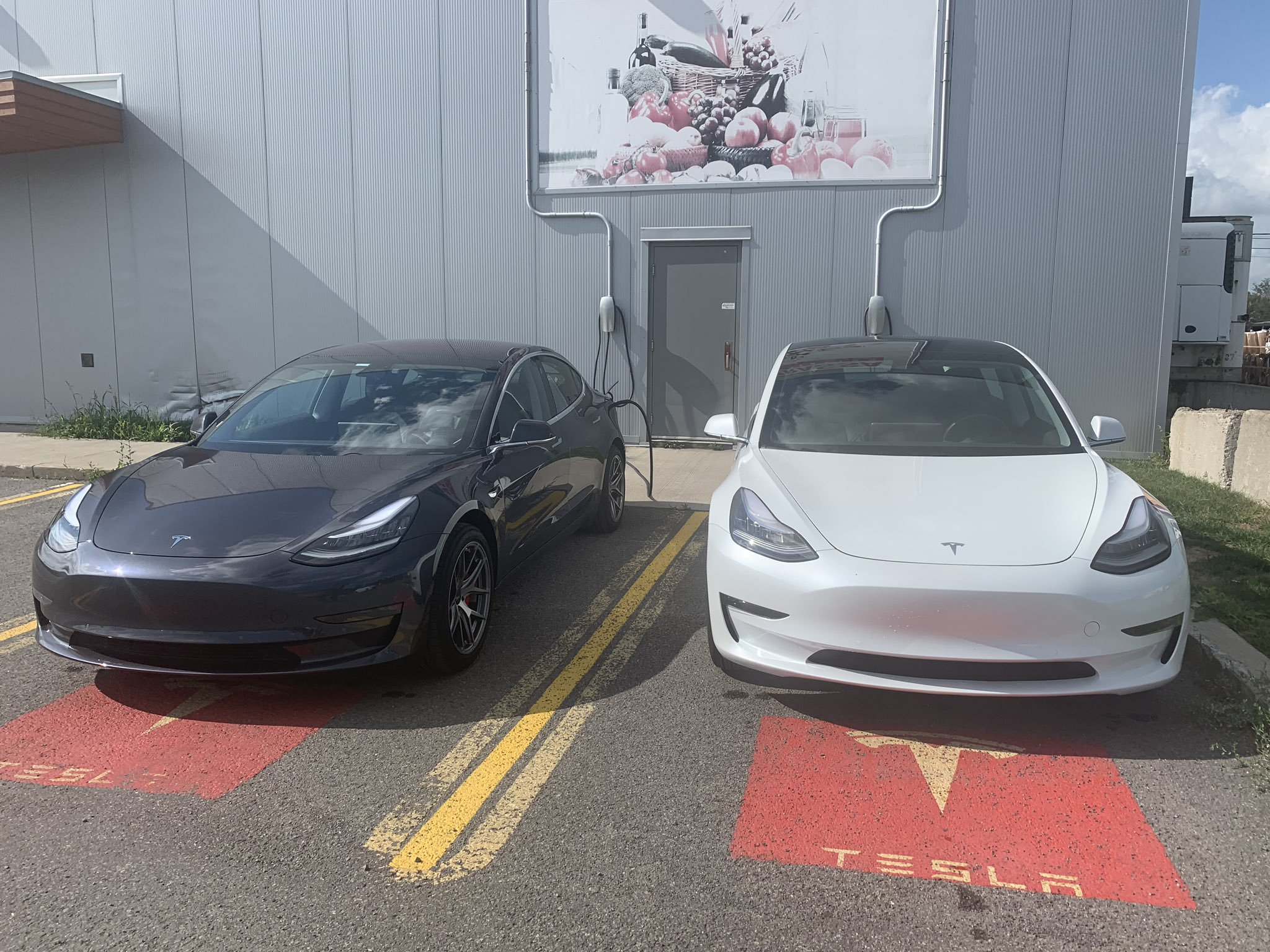 The cars of the day: Tesla Model 3 Performance (MAGNETO) in Midnight Silver Metallic and Model 3 Standard Range Plus in white.