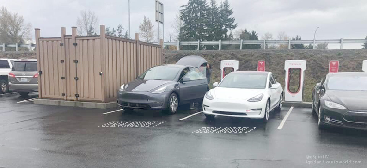 Tesla Model 3 and Model Y side-by-side at a Supercharger station in California.
