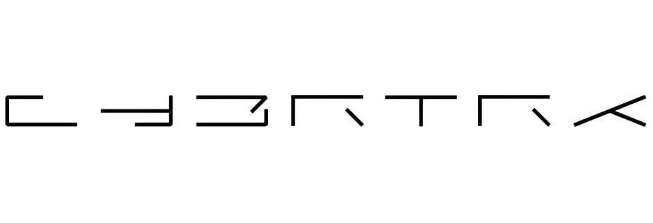 Tesla Cybertruck logo 'CYBRTRK' carved in futuristic Blade Runner style font.