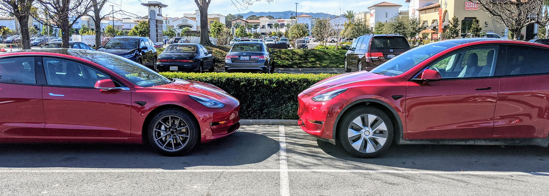 Tesla Model 3 and Tesla Model Y head to head, showing us the size difference from the side view profile.