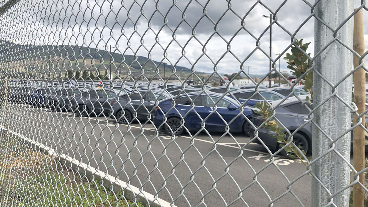 Tesla Fremont car factory's parking lot area full of Tesla Model Y compact SUVs.